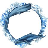 Quadro da aquarela com baleia, baleia de esperma, narval, peixe ilustração royalty free