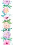 Quadro da aquarela com flores e as folhas delicadas ilustração stock