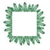 Quadro da aquarela do Natal com ramos verdes da dor e as bagas vermelhas ilustração royalty free