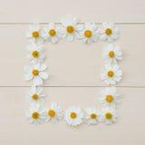 Quadro da flor branca de Quadrate da agulha espanhola Foto de Stock Royalty Free