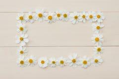 Quadro da flor branca do retângulo da agulha espanhola Imagens de Stock Royalty Free
