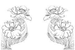 Quadro da flor do vetor ilustração royalty free