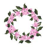 Quadro da flor da magnólia ilustração stock