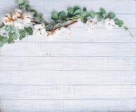 Quadro da flor no fundo de madeira Fotografia de Stock