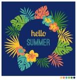 Quadro da forma arredondada do verão Fotos de Stock