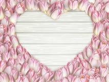 Quadro da forma do coração das tulipas Eps 10 Foto de Stock Royalty Free