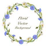 Quadro da grinalda com flores selvagens Imagens de Stock Royalty Free