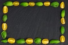 Quadro da manjericão, tomate Imagens de Stock Royalty Free