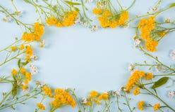 Quadro da mola feito de poucas flores amarelas e brancas no fundo claro da hortelã Imagem de Stock