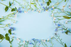 Quadro da mola feito de poucas flores azuis e brancas na luz MI Imagem de Stock Royalty Free