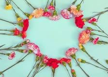 Quadro dado forma cora??o das flores do cravo fotografia de stock royalty free