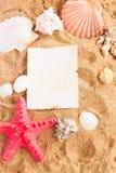 Quadro das conchas do mar da American National Standard da estrela do mar na areia Imagem de Stock