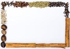Quadro das especiarias Imagem de Stock