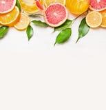 Quadro das fatias das citrinas no fundo de madeira branco Foto de Stock