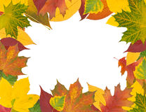 Quadro das folhas de outono ilustração royalty free