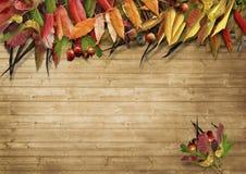 Quadro das folhas de outono no fundo de madeira Imagem de Stock