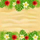 Quadro das folhas de palmeira e das flores no fundo arenoso ilustração royalty free