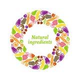 Quadro das frutas e legumes Fotos de Stock Royalty Free