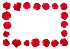 Quadro das pétalas de Rosa vermelha imagem de stock royalty free