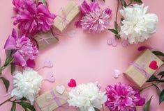 Quadro das peônias, das caixas de presente e de corações decorativos em um CCB cor-de-rosa Imagens de Stock Royalty Free