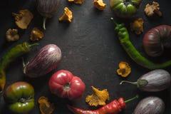 Quadro das primas, do pimentão e dos vegetais em uma tabela cinzenta Foto de Stock
