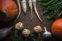 Quadro das raizes da salsa, do aipo com folhas e da abóbora em placas marrons Imagens de Stock Royalty Free