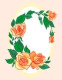 Quadro das rosas abstratas Fotografia de Stock Royalty Free