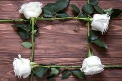 Quadro das rosas longas brancas na superfície de madeira Ideia original do presente orgânico imagem de stock