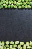 Quadro de couves de Bruxelas Fotos de Stock