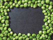 Quadro de couves de Bruxelas Imagem de Stock