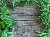 Quadro de ervas frescas Foto de Stock