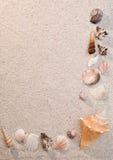 Quadro de escudos do mar na areia foto de stock