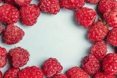Quadro de framboesas frescas no fundo azul com espaço da cópia Imagens de Stock Royalty Free