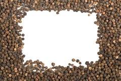 Quadro de grãos de pimenta crus, naturais, não processados da pimenta preta Fotografia de Stock