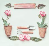 Quadro de jardinagem com sinal, ferramentas, flores e potenciômetros da planta, pá na luz - fundo verde Imagem de Stock Royalty Free