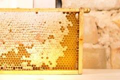Quadro de madeira com o favo de mel completo do mel imagens de stock