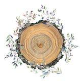 Quadro de madeira da textura e das folhas para o cartão, a bandeira ou o fundo relativo à promoção, ilustração gráfica Fotos de Stock