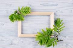 Quadro de madeira vazio e folhas verdes novas na luz - placa de madeira azul Fundo decorativo da mola com espaço da cópia, vista  Imagem de Stock Royalty Free