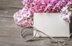 Quadro de papel com flores e cabo do jacinto Imagem de Stock