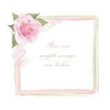 Quadro de Rosa da flor isolado no fundo branco Decoração floral do vetor Fotografia de Stock Royalty Free