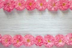 Quadro de rosas cor-de-rosa bonitas no fundo de madeira branco Configuração lisa, vista superior, espaço da cópia foto de stock