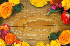 Quadro de rosas multi-coloridas imagens de stock