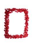 Quadro de sementes vermelhas dispersadas do fruto da romã Imagem de Stock Royalty Free
