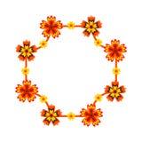 Quadro decorado com flores brilhantes Imagens de Stock Royalty Free