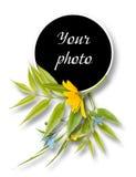 Quadro decorado para a foto no fundo branco fotografia de stock