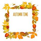 Quadro decorativo das folhas de outono Fotografia de Stock Royalty Free