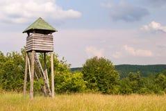 Quadro di comando di caccia in alta erba con gli alberi nei precedenti Fotografia Stock