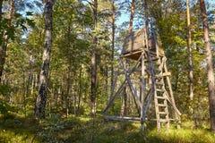 Quadro di comando di legno di caccia dei cervi nascosto in una foresta fotografie stock