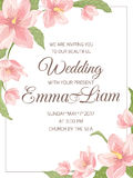 Quadro do canto de sakura da magnólia do convite do casamento Fotos de Stock