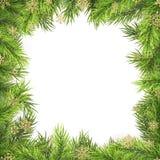 Quadro do Natal com ramos do pinho e sombra isolada no branco Eps 10 ilustração stock